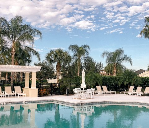 Sarasota, Florida, Pool, Swimming pool, palm trees, blue skies