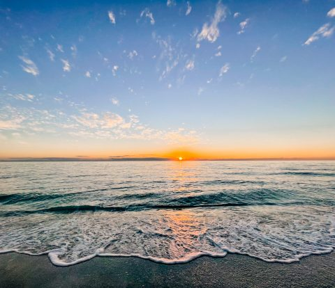 Anna Maria Island Travel Guide - Things to do on Anna Maria Island