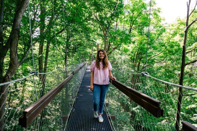 The Holden Arboretum Canopy Walk - Outdoor activities to do in Northeast Ohio