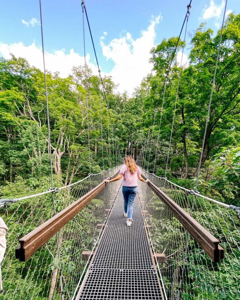 Walking the Murch Canopy Walk